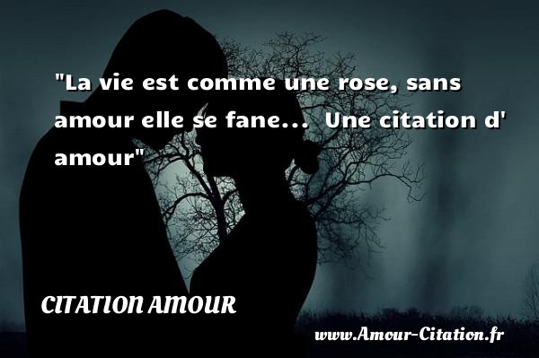 Citation Amour Tout Savoir Sur Les Citations Amour Amour Citation Fr