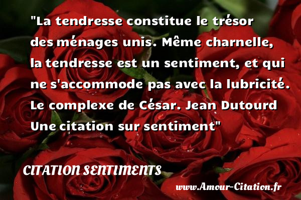 Citation Sentiments Tout Savoir Sur Les Citations