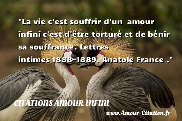 La Vie Cest Souffrir Dun Amour Citations Amour Infini