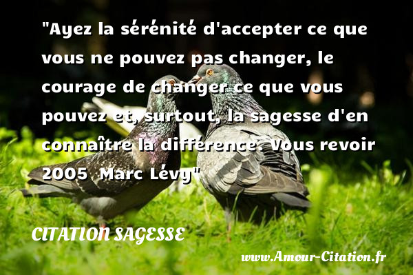 Ayez La Serenite D Accepter Ce Citation Sagesse Sagesse