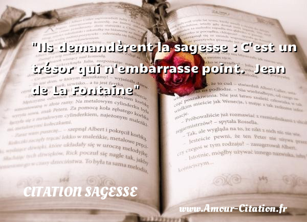 Ils demandèrent la sagesse : C est un trésor qui n embarrasse point.   Jean de La Fontaine   Une citation sur la sagesse CITATION SAGESSE