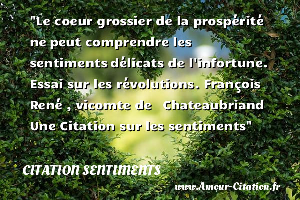 Le coeur grossier de la prospérité ne peut comprendre les sentiments délicats de l infortune. Essai sur les révolutions  [ François René , vicomte de  Chateaubriand ]  Une Citation sur les sentiments  CITATION SENTIMENTS