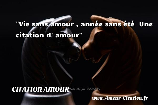 vie sans amour ann e sans t amour citation amour po me amour citation amour proverbes. Black Bedroom Furniture Sets. Home Design Ideas